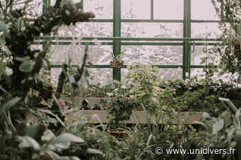 Vide-jardin L'Aria Cornebarrieu - Unidivers
