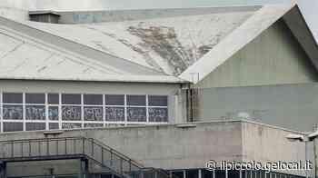 Confronto sull'avanzo di bilancio a Trieste, fondi per il tetto del PalaChiarbola - Il Piccolo