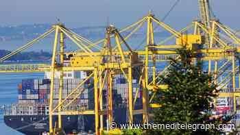 Trieste Marine Terminal, cresce il volume dei container - The MediTelegraph