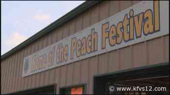 Cobden Peach Festival returns in August - KFVS