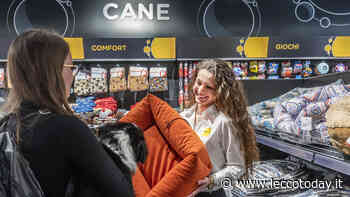 Arcaplanet raddoppia in provincia di Lecco: aperto il nuovo negozio di Olginate - LeccoToday