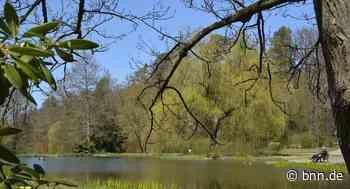 Raus in die Natur Was man im Kurpark Waldbronn neben der Natur noch erleben kann von - BNN - Badische Neueste Nachrichten