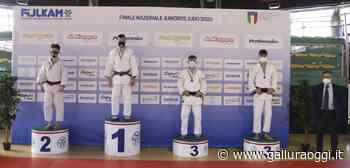 Da Olbia alla nazionale di judo, arriva la convocazione per Nicolò Cadoni - Gallura Oggi
