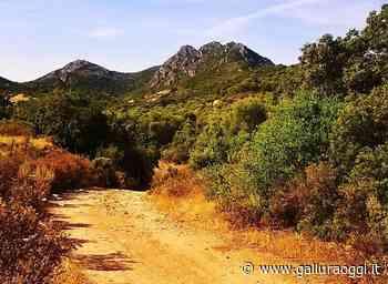 Olbia, con Olbia Spring alla scoperta dei sentieri per il turismo attivo - Gallura Oggi