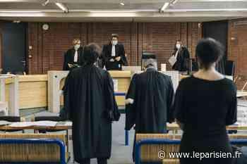 Plongée au cœur du tribunal de Bobigny : «On rencontre toute la société et, parfois, ce qu'elle a de pire» - Le Parisien