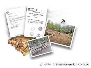 Notaría de Aguadulce señalada en otro fraude de tierras en la provincia de Colón - Panamá América