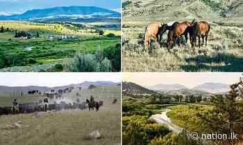 Montana ranch that was backdrop to Robert Redford film 'A River Runs Through It' sells for $135m - nation.lk - The Nation Newspaper