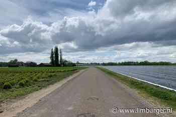 Druk in het Heuvelland? In Midden-Limburg is het heerlijk rustig en landelijk fietsen - De Limburger