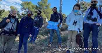 La Ciotat : une sortie à la découverte des oiseaux marins sur l'Île Verte avec l'Atelier bleu - La Provence