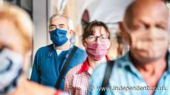 Vaccinated Americans no longer need to wear masks or socially distance, CDC announces: 'We have all longed for this moment'