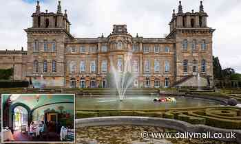 Blenheim Palace will call Indian Room the Summer Terrace Room in new Churchill exhibition