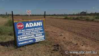 Adani contractor left asking government for finance after insurers flee