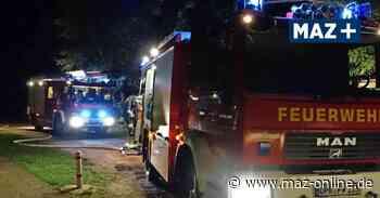 Brandserie: Angler entdeckt Feuer zwischen Bantikow und Wusterhausen - Märkische Allgemeine Zeitung