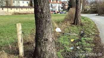 Missstände am Meinteweg: In Uslar wird immer häufiger Müll illegal entsorgt - HNA.de