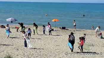 Il litorale di Torvaianica ripulito dai rifiuti: oltre 100 volontari in azione - IlFaroOnline.it