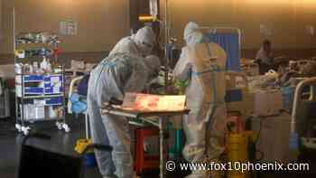 India's coronavirus doctors report 'black fungus' infections among some patients - FOX 10 News Phoenix