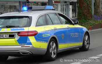Ludwigshafen: Unfälle unter Alkoholeinfluss - Regenbogen
