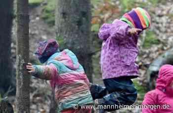 Ludwigshafener Waldkindergarten findet Zustimmung - Ludwigshafen - Nachrichten und Informationen - Mannheimer Morgen