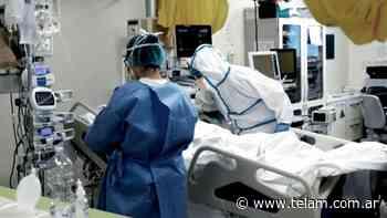 Coronavirus: la curva de fallecidos no cede, murieron 448 personas en las últimas 24 horas - Télam