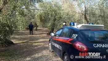 Cadavere di un uomo trovato in un casolare a Carbonara: sul corpo ferite da arma da taglio - BariToday