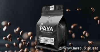 Pyme costarricense Paya Coffee gana reconocido premio de la industria culinaria - Periódico La República (Costa Rica)
