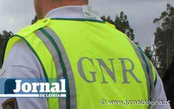 GNR multou Município da Marinha Grande por não limpar mato no Pinhal de Leiria, um ano depois do incêndio de 2017 - Jornal de Leiria