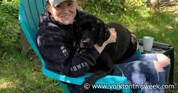 Go Fund Me helping Moosomin resident - Yorkton This Week