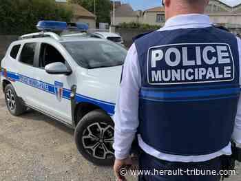 PEZENAS - La ville recrute deux agent(e)s temporaires de Police Municipale - Hérault Tribune - Hérault-Tribune