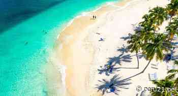 Turismo de playa: la estrategia que siguen hoteles de Máncora y Punta Cana para captar huéspedes - Diario Perú21
