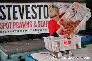 Steveston restaurant, fishermen expecting a 'crazy' spot prawn season this year - Richmond News