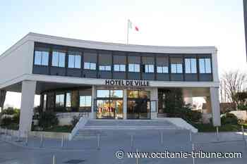 Castelnau-le-Lez - Chêne du Salaison : la volonté de la Ville a toujours été de préserver l'arbre - OCCITANIE tribune