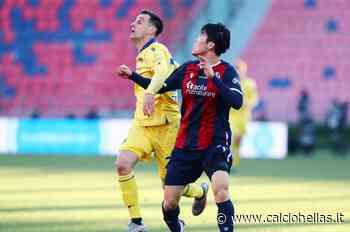 Serie A, nessuno spostamento per Verona-Bologna - Calcio Hellas