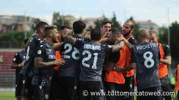 Ternana, sirene dalla Serie A per il centrale Kontek. L'Hellas Verona l'ha messo nel mirino - TUTTO mercato WEB