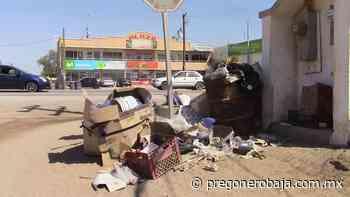 Hasta 3 semanas tarda en pasar recolector de basura en Ciudad Guadalupe Victoria - PregoneroBaja