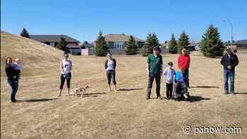 Major upgrades planned for Shellbrook's Centennial Park - paNOW