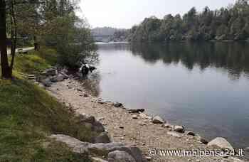 Rifiuti lungo il Ticino a Sesto: in azione i volontari di Legambiente per ripulire - MALPENSA24 - malpensa24.it