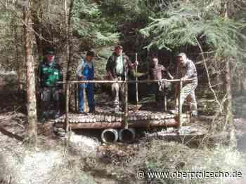 Brücke aus Holz: Oberpfälzer Waldverein errichtet kleines Bauwerk - OberpfalzECHO