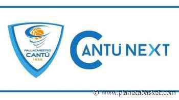 Assemblea dei soci Cantu Next SpA: definito l'ultimo layout progettuale della nuova arena - Pianetabasket.com
