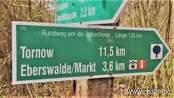 An sieben Tagen rund um die Schorfheide - rbb24