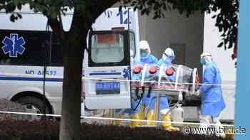 """Corona: Pandemie """"hätte verhindert werden können"""", meinen Experten - BILD"""