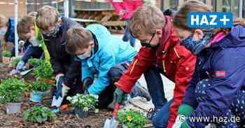 Burgwedel: Grundschule Fuhrberg organisiert coronakonformen Umwelttag - Hannoversche Allgemeine