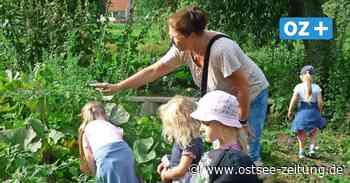 Kita-Kinder aus Franzburg testen neues Vorschul-Projekt - Ostsee Zeitung