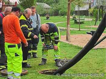 Feuerwehr Steinhagen wird zu Umwelteinsatz gerufen: Farbe fast im Bach - Steinhagen - Westfalen-Blatt