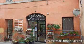Foligno, raid dei ladri nei negozi del centro storico: quindici i colpi messi a segno - Corriere dell'Umbria