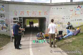 Fietstunnel krijgt bijzondere make-over
