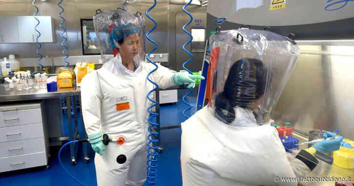 """Covid, su Science una lettera di 18 scienziati di alto profilo: """"Necessaria inchiesta rigorosa sull'ipotesi dell'incidente di laboratorio"""""""