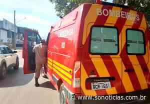 Mais uma cobra é capturada pelos bombeiros em avenida de Alta Floresta; 50 em 4 meses - Só Notícias
