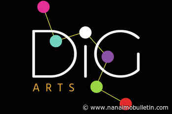 Arts group promotes digital literacy for Island artists