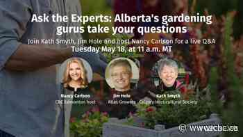 Ask the Experts: Alberta's top gardeners take your questions