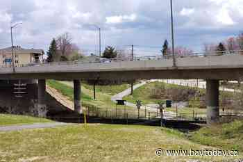 UPDATED: Shot fired near Trout Lake overpass Tuesday as officer forced to dispatch wounded animal - BayToday.ca
